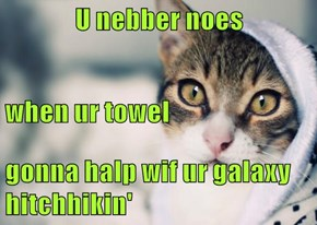 U nebber noes when ur towel gonna halp wif ur galaxy hitchhikin'
