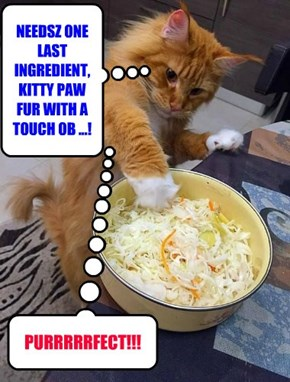 NEEDSZ ONE LAST INGREDIENT, KITTY PAW FUR WITH A TOUCH OB ...!