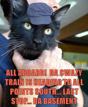ALL ABOARD!  DA CWAZY TRAIN IS HEADING TO ALL POINTS SOUTH... LAST STOP... DA BASEMENT