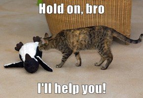 Hold on, bro  I'll help you!