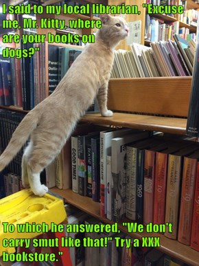 "I said to my local librarian, ""Excuse me, Mr. Kitty, where                                                                      are your books on                                       dogs?""  To which he answered, ""We don't carry smut like that!"" Try a XX"