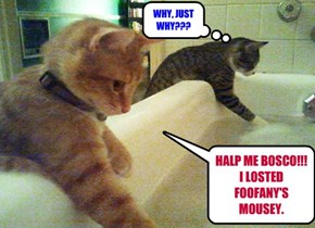 HALP ME BOSCO!!! I LOSTED FOOFANY'S MOUSEY.