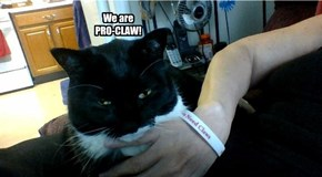 We are PRO-CLAW!
