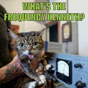 WHAT'S THE FREQUENCY KENNETH?