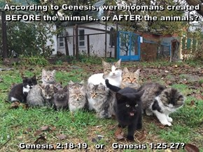 According to Genesis, were hoomans created BEFORE the animals.. or AFTER the animals?  Genesis 2:18-19   or   Genesis 1:25-27?