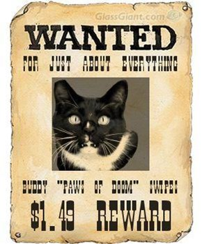 Mr. Buddy Swipes: Wanted... for justa 'bout ebbryfing