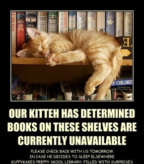 OUR KITTEH HAS DETERMINED BOOKS ON THESE SHELVES ARE  CURRENTLY UNAVAILABLE