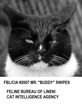 Mr. Buddy Swipes:  FBL/CIA Photo ID #2007