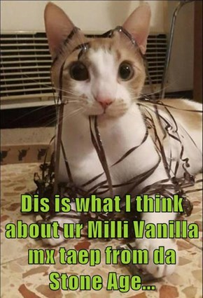 Dis is what I think about ur Milli Vanilla mx taep from da Stone Age...