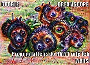 GOOGLE                                       DREAMSCOPE  Proving kittehs do NAWT rule teh webs.
