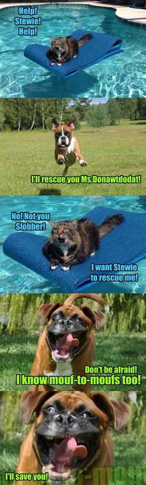 The Rescue of Ms.Donawtdodat