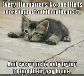 Every life matters. No one life is more important than the next.  And everyone is only trying             to find their way home.