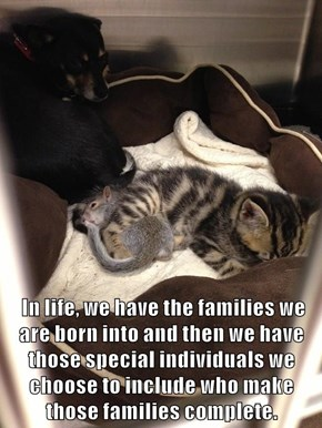 In life, we have the families we are born into and then we have those special individuals we choose to include who make                                    those families complete.