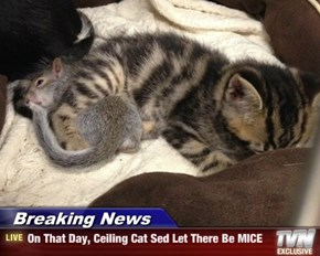 Breaking News - On That Day, Ceiling Cat Sed Let There Be MICE