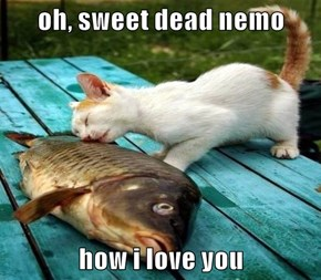 oh, sweet dead nemo  how i love you