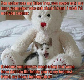 You neber use my litter tray, you never eatz my tuna, youneber take teh chair I want, I wish I'd met you sooner.  It seems you always need a hug the same tiem dat I do,Oh Teddy you're my bestest frend, my heart belongz to u!