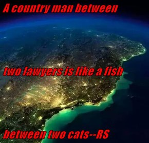 A country man between  two lawyers is like a fish between two cats--RS