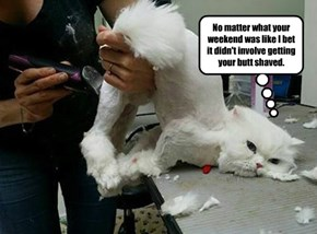 No matter what your weekend was like I bet it didn't involve getting your butt shaved.