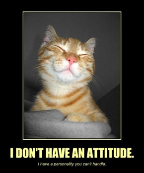 I DON'T HAVE AN ATTITUDE.