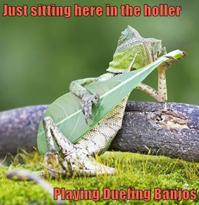 Just sitting here in the holler  Playing Dueling Banjos