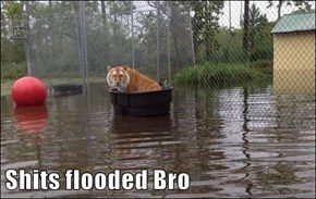 Shits flooded Bro