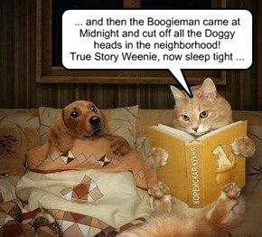 Weenie Hated When Tiddles Told Him His Bed Time Stories!