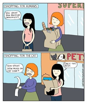 Shopping For Your Human Friends vs. Your Furry Friends