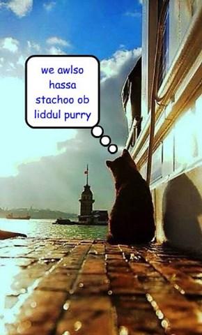 we awlso hassa stachoo ob liddul purry