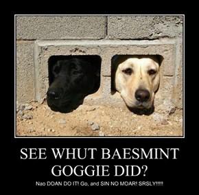 SEE WHUT BAESMINT GOGGIE DID?