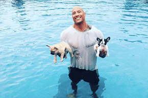 Keep an Eye on Your Puppies Around Water, The Rock Will Not Always Be There to Save Them