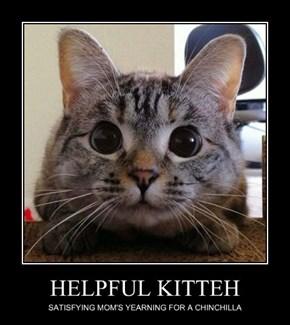 HELPFUL KITTEH