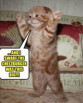 ... AND I SWARE THE CHEEZBURGER WAS THIS BIG!!!