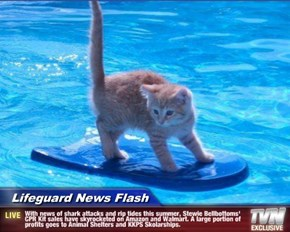 Lifeguard News Flash - With news of shark attacks and rip tides this summer, Stewie Bellbottoms' CPR Kit sales have skyrocketed on Amazon and Walmart. A large portion of profits goes to Animal Shelters and KKPS Skolarships.