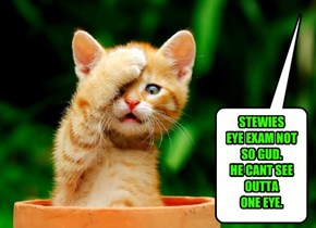 STEWIES  EYE EXAM NOT SO GUD.  HE CANT SEE OUTTA  ONE EYE.