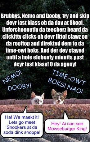 Nemo and Dooby duz mischiffs at KKPS
