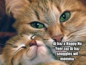 Kitten's Happy New Year.