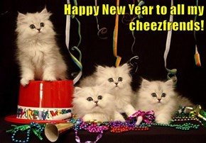 Happy New Year to all my cheezfrends!