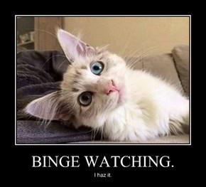 BINGE WATCHING.