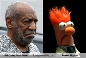 Bill Cosby After Arrest Totally Looks Like Beaker Muppet