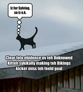 Unknowed Kitteh Sighting!