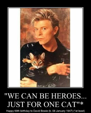 """WE CAN BE HEROES... JUST FOR ONE CAT""*"