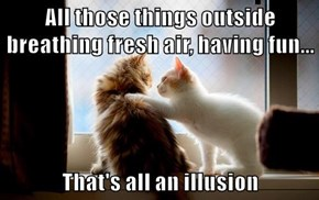All those things outside breathing fresh air, having fun...  That's all an illusion