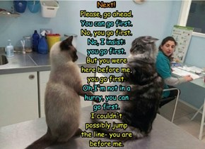 Nobody Wants To Be First To See The Vet.