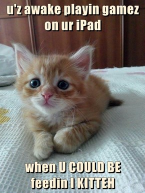u'z awake playin gamez on ur iPad  when U COULD BE                           feedin I KITTEH