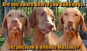 Are you aware Sharia Law BANS dogs..  sez unclean & offends Muslims?