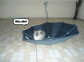 Alice, who?