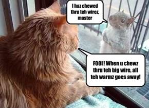 I haz chewed thru teh wirez, master
