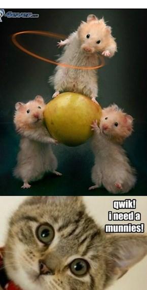 Qwik!