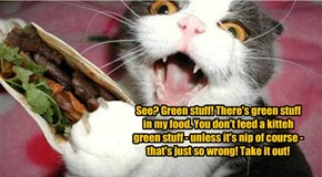 See? Green stuff! There's green stuff in my food. You don't feed a kitteh green stuff - unless it's nip of course - that's just so wrong! Take it out!