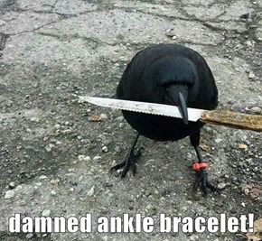damned ankle bracelet!